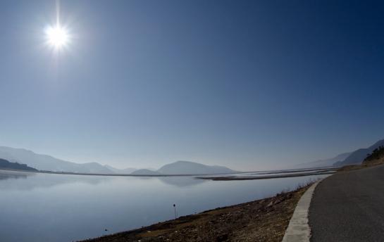 Napa Lake, Shangri-La, heaven for water fowl!