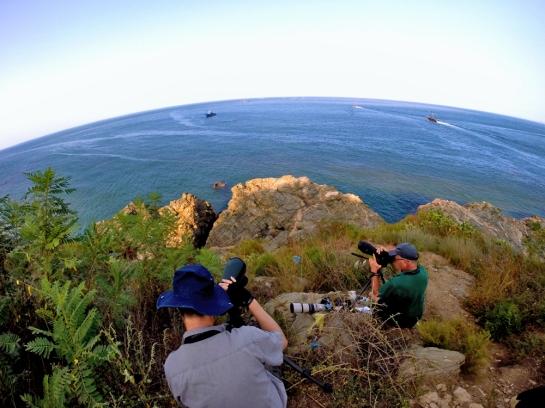 the art of seabirding!